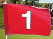 Standard Golf Flags & Practice Green Flags